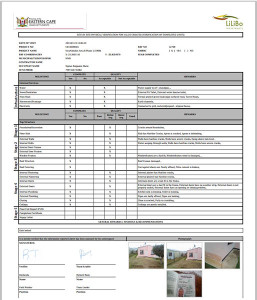 Final Property PDF