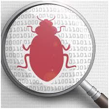 software bug